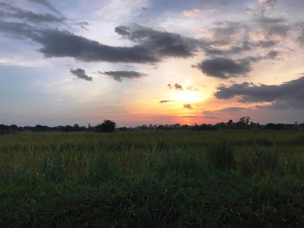 Sonnenuntergang Uganda Bild  Naturkost UEblehoer.JPGSonnenuntergang Uganda Bild  Naturkost UEblehoer